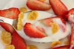Закваски для йогурта в Луганске
